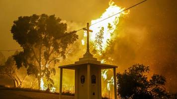 Portugal forest fire: 12 survive by hiding in a water tank