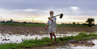 Punjab govt announces debt waiver for farmers owning up to 5 acres