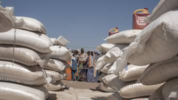 'half' nigeria food aid for boko haram victims not delivered