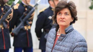 French Defence Minister resigns over fake jobs scandal