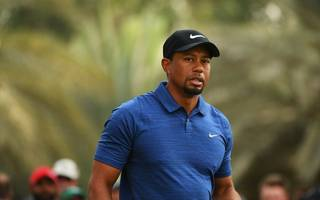 "tiger woods seeking ""professional help"" following arrest"