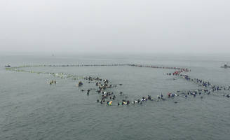 511 surfers break world record together in Huntington Beach