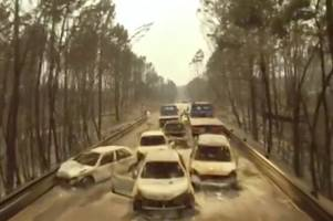 dramatic drone footage shows burnt out wrecks of cars following portugal forest fire