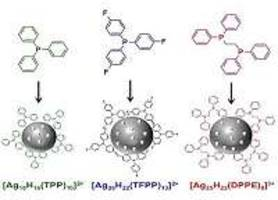 Silver atom nanoclusters could become efficient biosensors