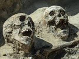 Skeletons of Russian soldiers found on site of battlefield