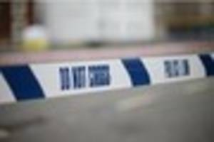 Essex Police appeal to find driver who caused pedestrian serious...