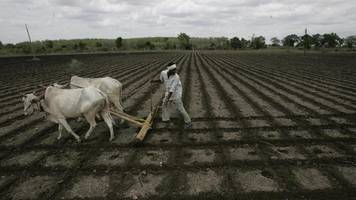 Maharashtra govt urges employees to contribute a day's salary for farmers' families in suicide prone areas