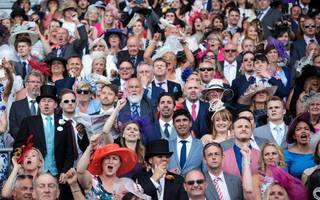 royal ascot 2017: cox and kirby set for more glory with speedy harry angel