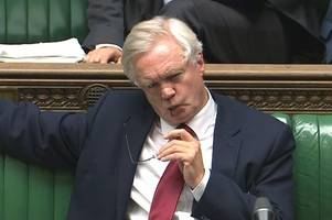 The heat has frazzled David Davis' brain if he thinks he's going to get us a great Brexit deal