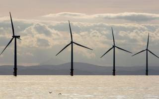 the tories can win over young voters by taking action on clean energy