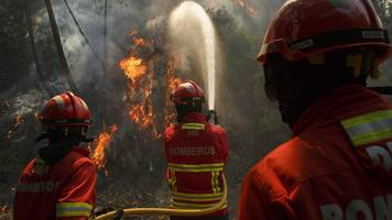 Portugal's Siresp rescue network 'failed forest fire victims'