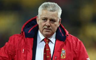 lions boss gatland shrugs off his depiction as a clown