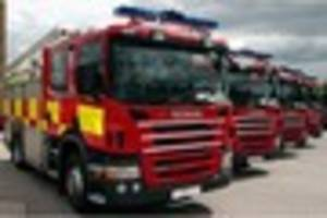fire crews come to rescue of horse stuck in a trailer