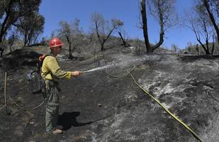Utah Lawmaker Blames Lack of Logging In Largest Active Wildfire In US