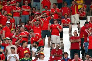 Wales football fans have made a wonderful gesture to struggling Serbian orphans