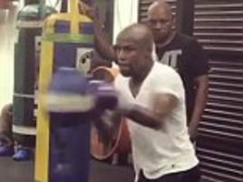 floyd mayweather hits gym hard ahead of mcgregor fight