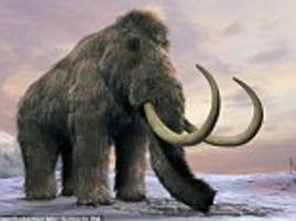 paypal's peter theil funds woolly mammoth resurrection
