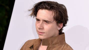is brooklyn beckham's book any good?
