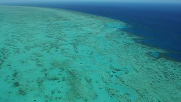great barrier reef: unesco opts against 'in danger' status