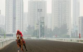 hong kong horse racing tips: durban demon can soar to victory on rocketeer