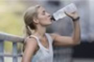 Reusing a water bottle is 'worse than licking a dog's toy'