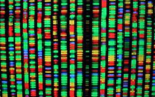 should genome sequencing be as standard as blood tests and biopsies?