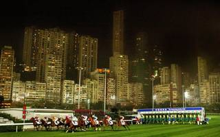 hong kong horse racing betting: gold talent a solid  bet at happy valley