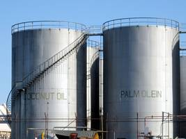 palm falls back as rival oils decline in late trade