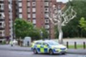 Park death update: Public and paramedics tried in vain to save...