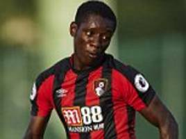 estoril 1-2 bournemouth: jordan ibe and max gradel score