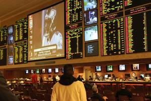 sports ministry kicks off process to legalise online betting in india: report