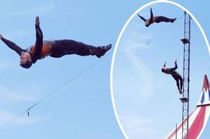 high-diving pirates perform 80ft acrobatics every day at m&d's