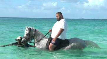 did dj khaled injure a horse due to overweight in the bahamas?