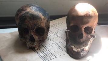 Human skulls discovered in carrier bags in Totnes