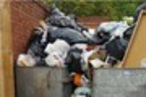 anger as missed bin collections lead to bluebottles & stench...