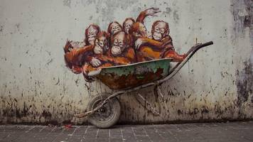 activist art tackles palm oil industry