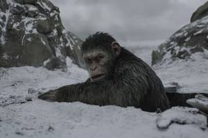 The deadly virus in Planet of the Apes is a fictional flu inspired by real-world pandemics