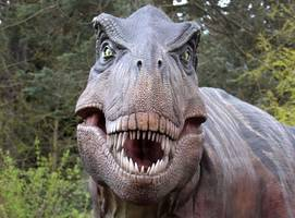 T.Rex Couldn't Run, But Was A Speed Walker, New Study Finds