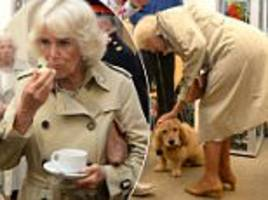 prince charles and camilla enjoy scones on cornwall visit