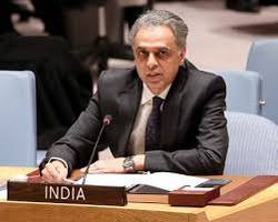 india concerned over peace, security in african region