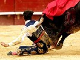 rookie matador left bloodied and battered by bull in spain
