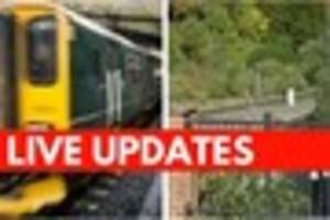 services at a standstill after tree falls on rail line in exeter...