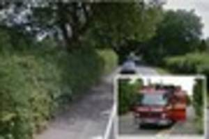 Firefighters use crane to rescue horse stuck in cesspit in Horley
