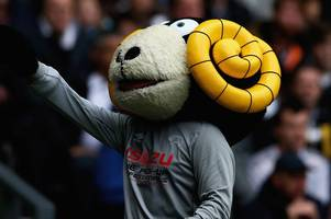 derby county mascot 'rammie' one of the most popular in english football