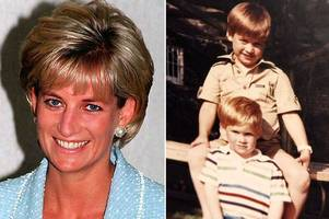 'a lifetime of regret' prince william and harry reveal heartbreak of cutting short final call to mum diana just hours before she died