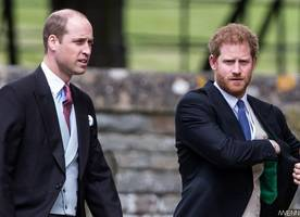 prince william and prince harry regret last short phone call with princess diana