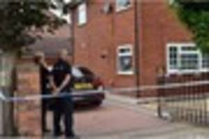 Police hunt yobs after lit firework thrown through window of...