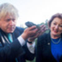 boris johnson learns about nz wildlife with maggie barry