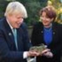 foreign secretary boris johnson's brush with reptilian overlords in new zealand
