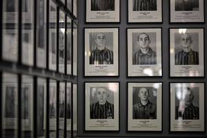 first auschwitz travelling exhibition will go around 14 cities in europe and us